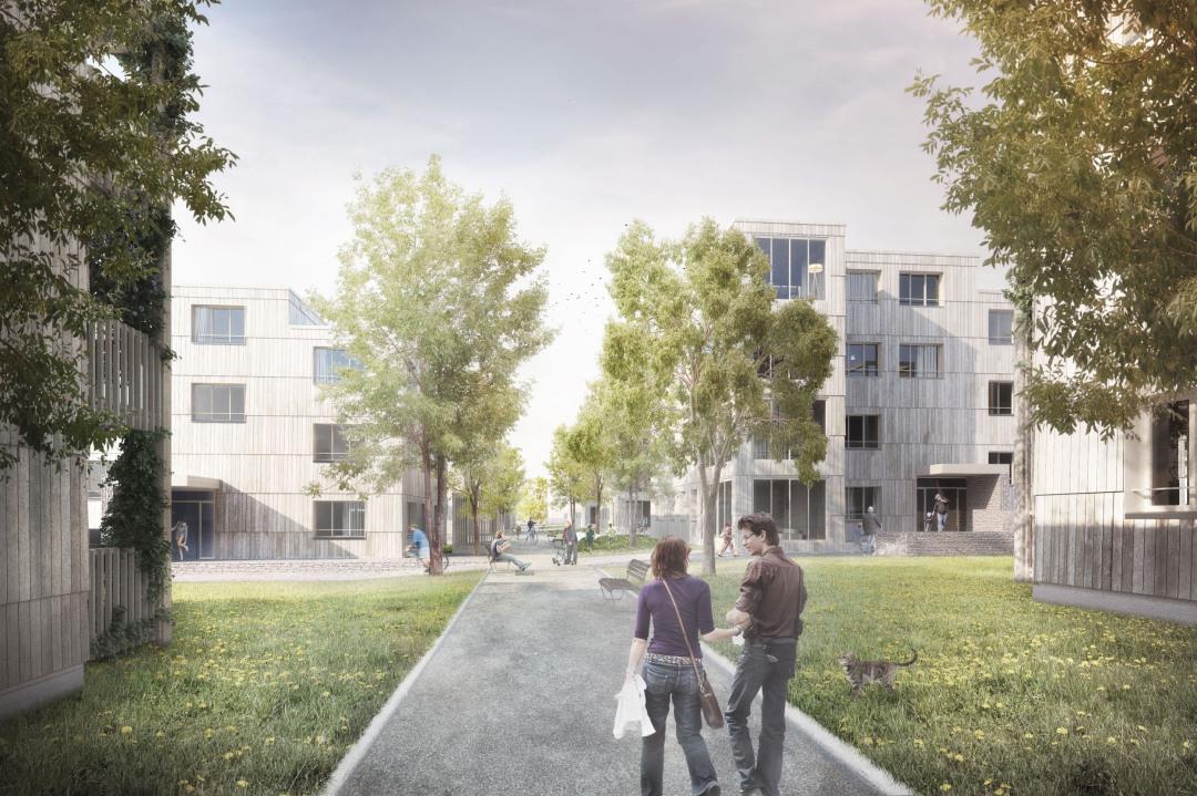 Wettbewerb Baumschulareal Hauenstein, Küttigen