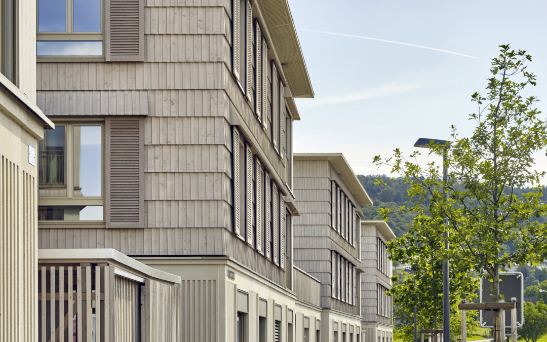 "Socially sustainable urban development. ""Neugrüen"". Mellingen"